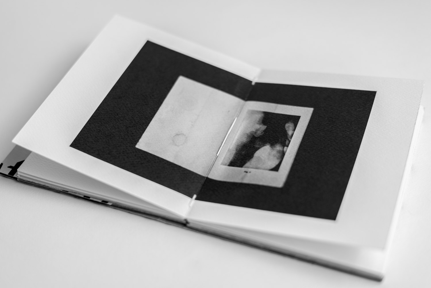 x-rays in the Artist Book by Stefano Conti
