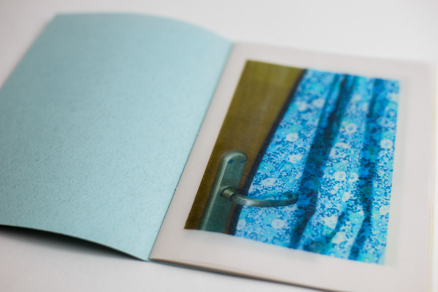 """door handle in front of a blue dress printed in Stefano Conti's book """"Untitled"""""""