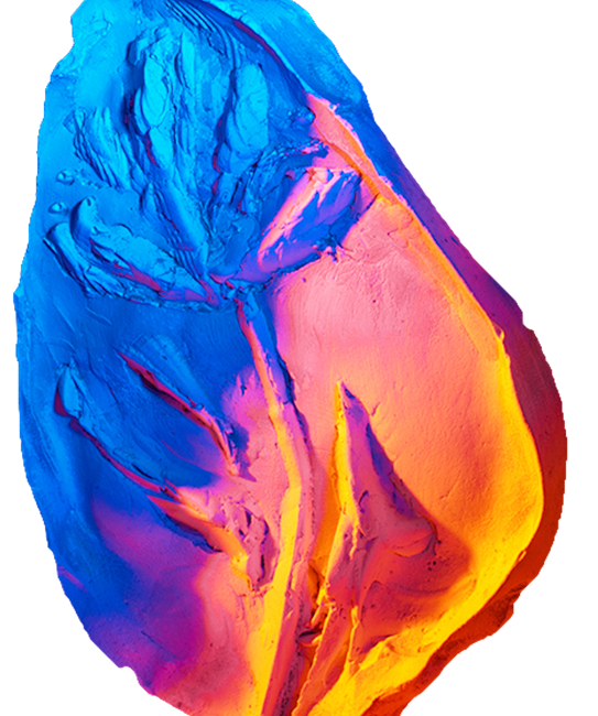 fossil of a leave coloured with red and blue light by artist Stefano Conti